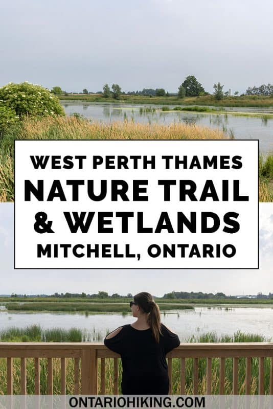 Let's travel to the small town of Mitchell, Ontario in Perth County for a fabulous hike. Go hiking on the West Perth Thames Nature Trail and West Perth Wetlands to admire scenery of the river and spot migratory birds. #Hiking #Ontario #Canada #Mitchell #PerthCounty #Wetlands #Birdwatching
