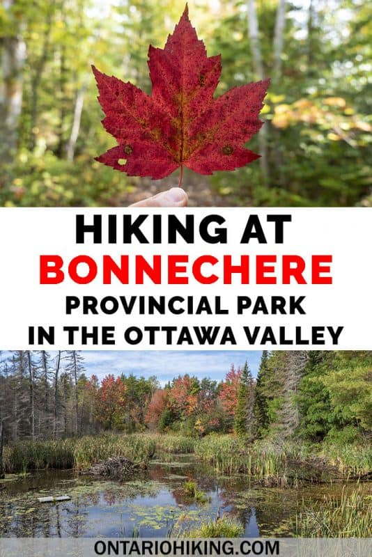 Bonnechere Provincial Park offers unique, informative, and beautiful hiking trails in the Ottawa Valley. Venture to the McNaughton Trail at the park or several of the Walks of the Little Bonnechere River. Let me show you all the best places to go hiking at one of the top Ontario Parks. #Ottawa #OttawaValley #Hiking #HikingTrails #Ontario