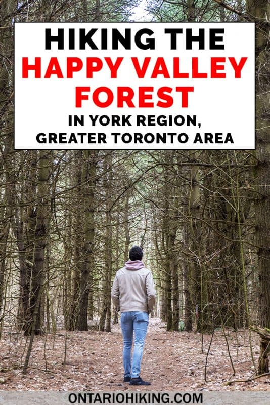How to hike at Happy Valley Forest, part of the York Regional Forest in the GTA (Greater Toronto Area). It's a beautiful natural space that's part of the Oak Ridges Moraine Trail, and it's the largest in tact deciduous forest in the region. Go hiking at this little visited hiking trail near Toronto, Ontario. #HappyValleyForest #HikingTrail #OntarioTrail #Ontario #Toronto #GTA