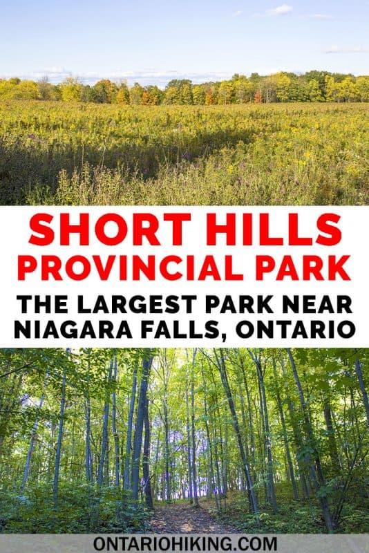 Short Hills Provincial Park offers seven hiking trails in the Niagara region, including the Bruce Trail. There's a variety of scenery, including dense forests and vast meadows. I'll show you how to take a journey on these Ontario hiking trails and find waterfalls, too! #Ontario #Hiking #Hike #HikingTrail #ProvincialPark #ShortHills #Niagara