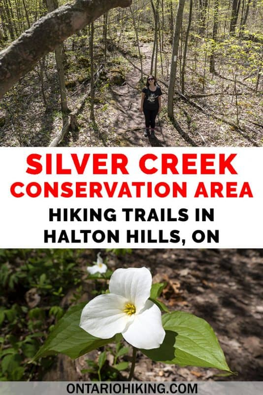 Silver Creek Conservation Area features the Bruce Trail and several side trails. It's a great place to hike in Halton Hills, Ontario, and it's one of the Credit Valley Conservation Areas. Boardwalks, river scenery, rocky trails, escarpment views...this conservation area has got it all. #SilverCreek #ConservationArea #OntarioHiking #Hiking #Ontario #Canada #Trails