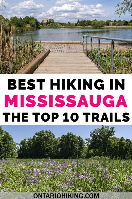 These are the best hiking trails in Mississauga, in the Greater Toronto Area. All 10 of these walking paths and hiking trails are found within the Mississauga city limits. There are so many wonderful conservation areas and trails in Mississauga, Ontario. #Mississauga #Ontario #Canada #Hiking #OntarioHiking