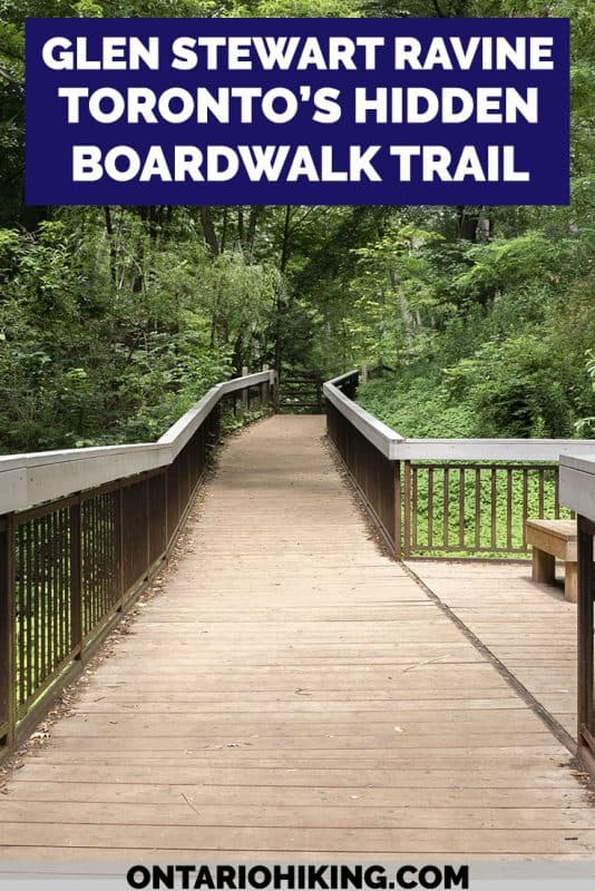 You'd hardly believe that this scenic hiking trail is in the middle of Toronto! The Glen Stewart Ravine is a hidden forest oasis with an elevated boardwalk. It's a lovely hike with a canopy of trees overhead, and one of the best places to walk and explore nature in Toronto. #Toronto #Ontario #Canada #Hiking #Trails