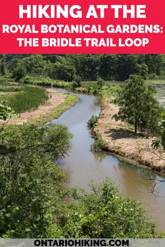 There are 31 hiking trails at the Royal Botanical Gardens in Burlington & Hamilton, Ontario. They're all free to visit and among the top regions of biodiversity in Canada! Here's how to hike the Bridle Trail Loop with picture perfect views, wildlife sightings and vast boardwalks. #RoyalBotanicalGardens #RBG #Burlington #Hamilton #Hiking #Ontario