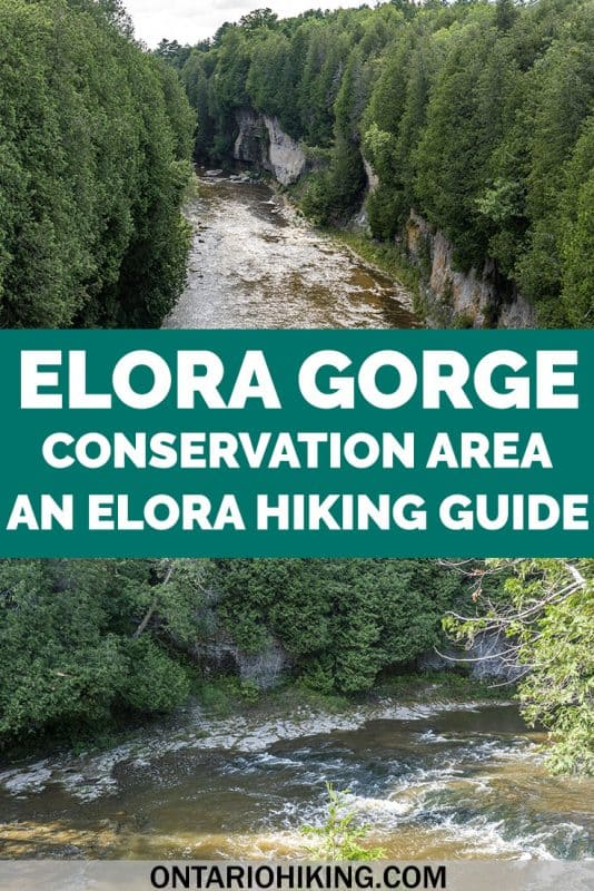The Elora Gorge is one of the most beautiful natural features in southern Ontario, and it's part of a vibrant, beautiful village, too! Here's how you can go hiking at the Elora Gorge Conservation Area and the best ways to witness this stunning place. #Elora #Ontario #Canada #Hiking #ConservationArea