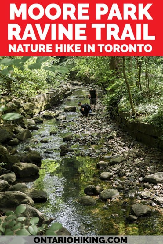 There's lots of scenic walking paths and hiking trails in Toronto! This loop trail combines three beautiful hiking trails in midtown Toronto through the Don Valley, including Moore Park Ravine and the Beltline Trail. #Toronto #Hiking #Ontario #Canada #Hikes