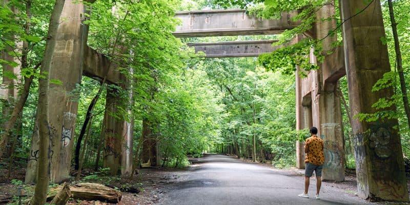 Moore Park Ravine Trail