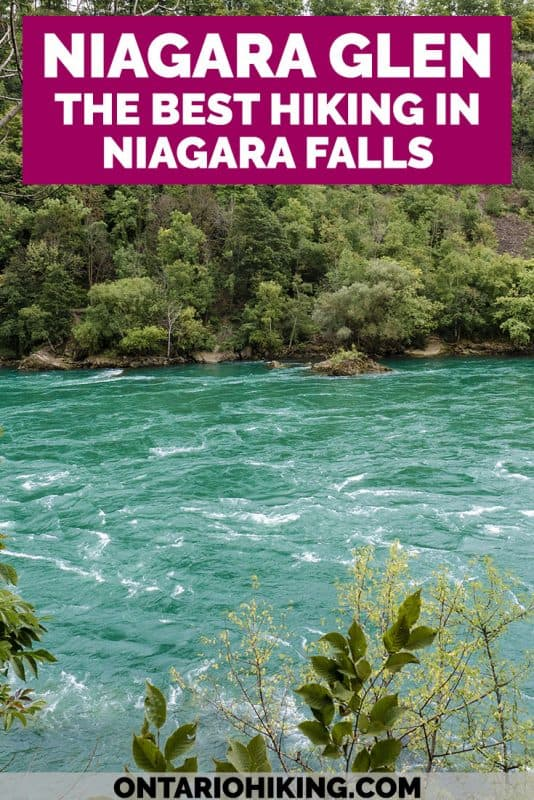 The Niagara Glen is one of the best places to hike in Niagara Falls. Hiking the Niagara Gorge and walking alongside the breathtaking Niagara River rapids is a magical experience. Here's how to plan your trip to the Niagara Glen.