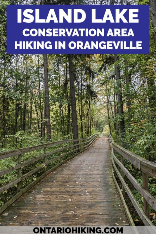 Island Lake Conservation Area is a beautiful hike around a vast lake featuring lush forests, lengthy boardwalks, and expansive bridges. You'll be able to spot lots of birds and wildlife. It's one of the best hikes in Orangeville and the entire region.