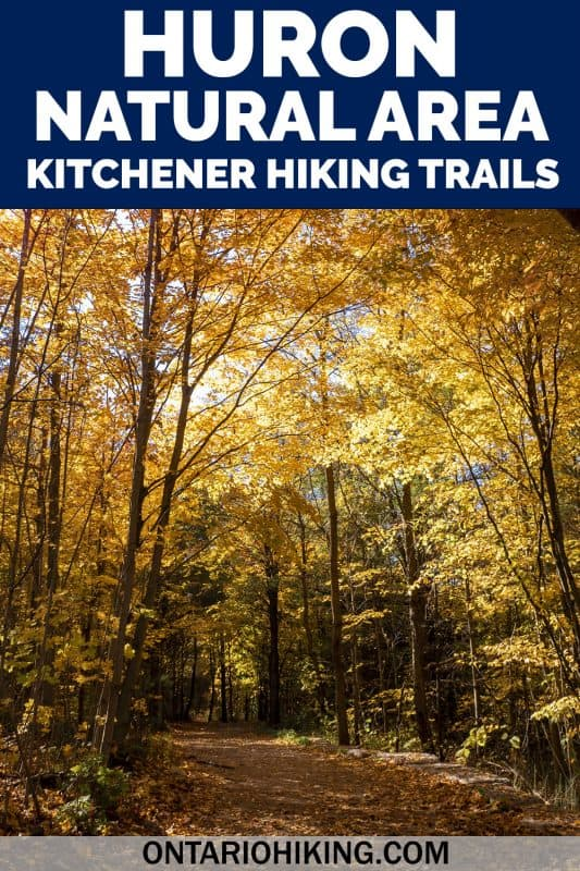 Huron Natural Area has some of the best hiking trails in Kitchener, Ontario. It's a stunning natural space featuring six trails, a beautiful pond, and forests with tall trees. Come along as I show you how to plan your visit!