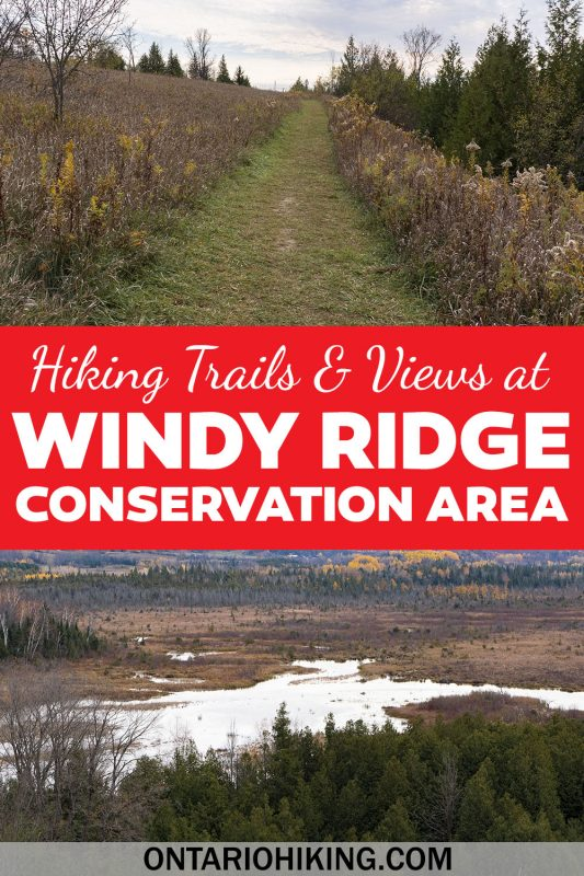 Windy Ridge Conservation Area is a great place for a short hike with amazing scenery. There's a panoramic lookout that you'll love. This is an awesome hiking trail to check out near Peterborough, Lindsay, and the Kawarthas.