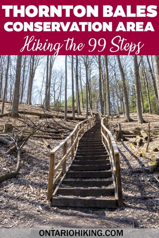Once you've hiked the 99 steps at Thornton Bales Conservation Area, continue your hiking adventure at Jokers Hill (King City, Ontario).