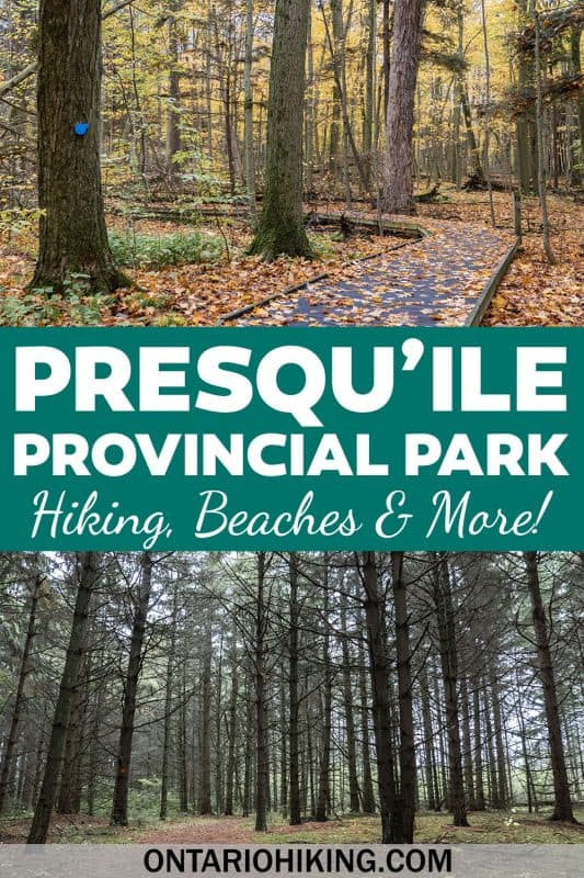 Presqu'ile Provincial Park is the perfect place to plan summer adventures in Ontario, Canada. There are tons of hiking trails, beaches, camping, a lighthouse, birding, and so much more!