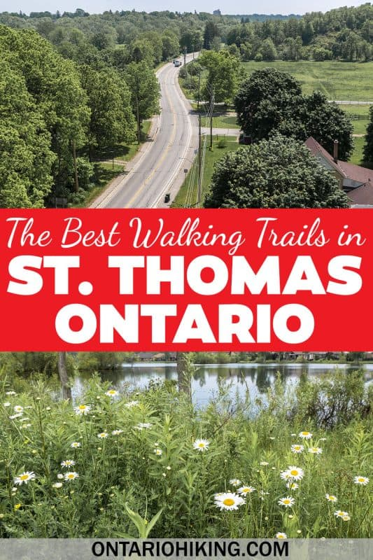 These are the best walking trails in St Thomas, Ontario. You'll find The Great Trail, beautiful parks with poppies, a gorgeous little lake, and the Elevated Park - the first of its kind in Canada!