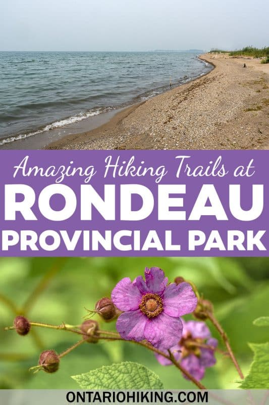 Rondeau Provincial Park has an incredible biodiversity and lots of amazing places to go hiking. Check out the best hiking trails at Rondeau Provincial Park in southwestern Ontario.